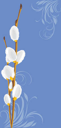 Pussy willow branch on the decorative background Vector