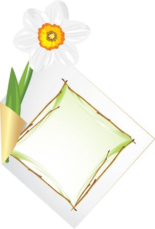 jonquil: Curled page with daffodil