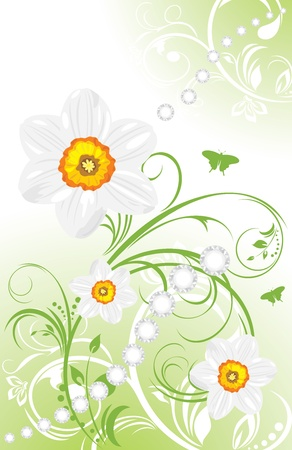 Spring ornamental background with daffodils Vector