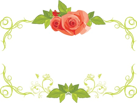Ornamental frame with roses Stock Vector - 13718033