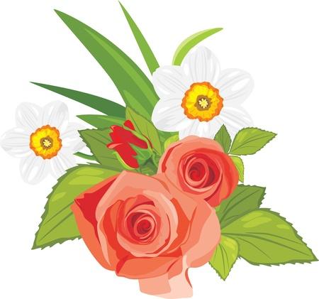 장미와 수선화. 축제 꽃다발 벡터 (일러스트)