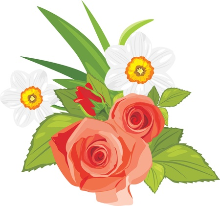 Roses and daffodils. Festive bouquet Vector