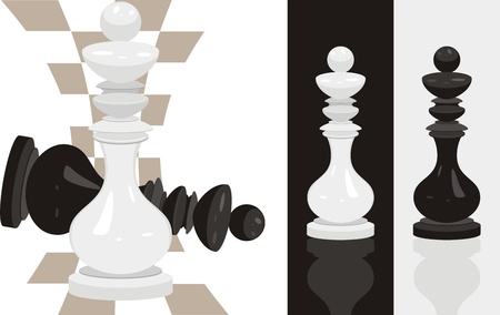 chessboard: White and black king chess