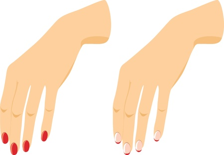 Female hands with manicure Vector