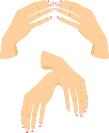 Female hands isolated on the white Vector