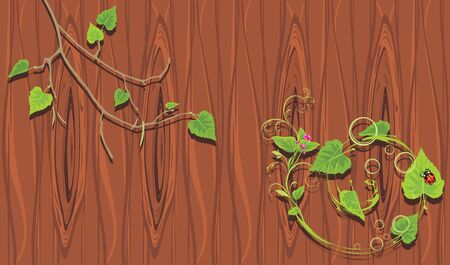 Birch branches on the wooden background Vector