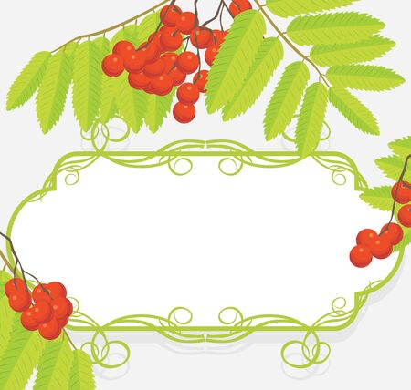 Decorative frame with rowan branches Vector