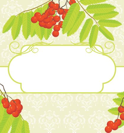 raceme: Decorative frame with rowan branches on the ornamental background Illustration