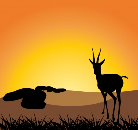 Antelope on a background of sunset Vector