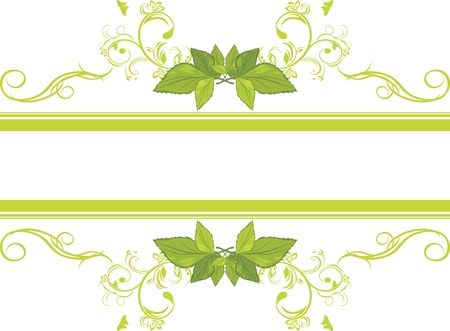 deciduous: Ornamental frame with green leaves