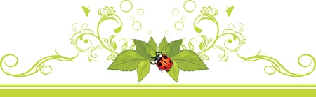 flora fauna: Ornamental border with ladybird and green leaves