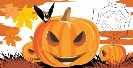 stocky: Halloween pumpkins, bat and spiders