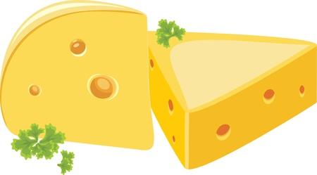 parmigiano: Pezzo di formaggio con prezzemolo