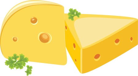 Piece of cheese with parsley Vector