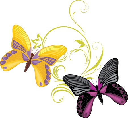 feeler: Pair of a bright butterflies with ornamental sprig