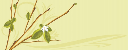 a sprig: Ramita floreciente en el fondo abstracto