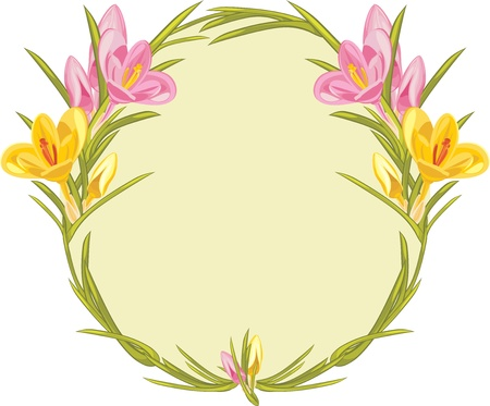 Wreath with pink and yellow crocuses Vector