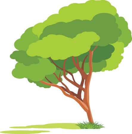 Spring tree isolated on the white background Vector