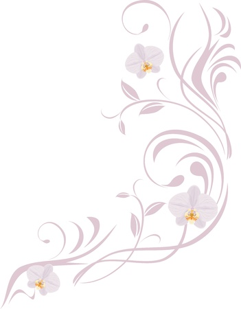 Ornamental sprig with orchids isolated on the white