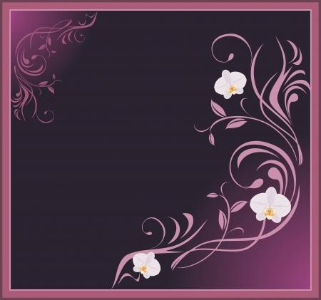a sprig: Ramita ornamental de orqu�deas en el marco decorativo