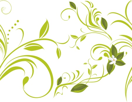 an inflorescence: Seamless floral background Illustration
