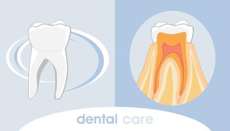 Dental care  Icon for design Vector