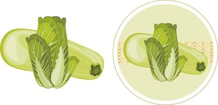 zucchini: Zucchini and cabbage  Label for design