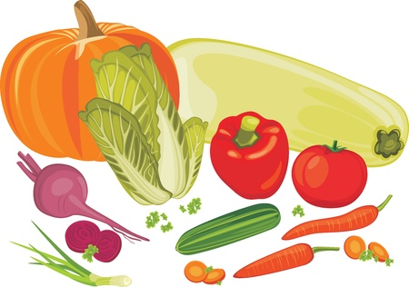 Vegetables isolated on the white