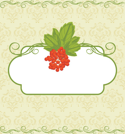 raceme: Decorative frame with red berries bunch on the ornamental background