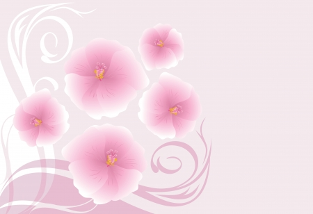 an inflorescence: Decorative background with blooming pink flowers