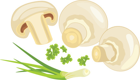 chives: Mushrooms with parsley and chives Illustration