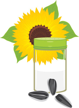 Salted sunflower seeds Vector