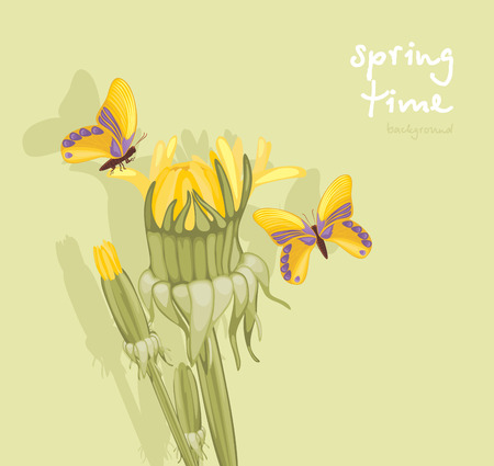 burgeon: Dandelions and butterflies  Springtime background Illustration