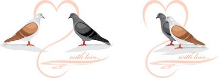 Two loving doves Vector
