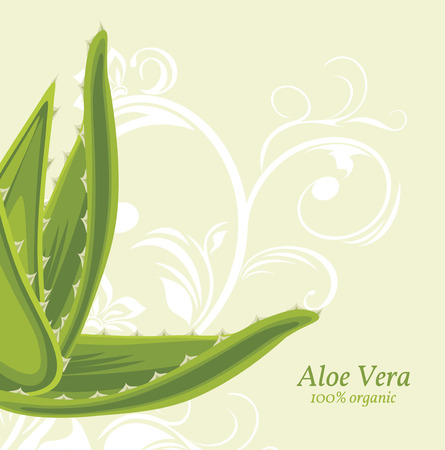 Decorative background with aloe vera Vector