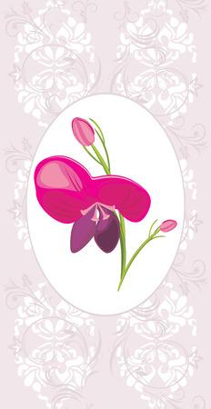burgeon: Light violet ornamental frame with flower Illustration
