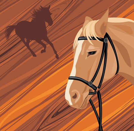hurrying: Horse head on the wooden background