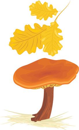 uneatable: Mushroom with oak leaves