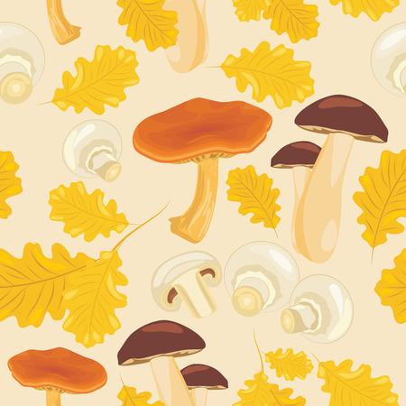 foglie di quercia: Funghi e foglie di quercia. Vettoriali