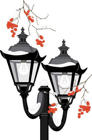 raceme: Street lantern among snowy rowan branches
