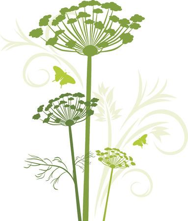 Silhouet van bloeiende venkel geïsoleerd op het witte Stock Illustratie