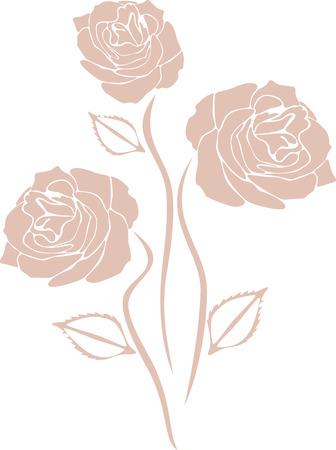 Stylized pink roses isolated on the white Illustration