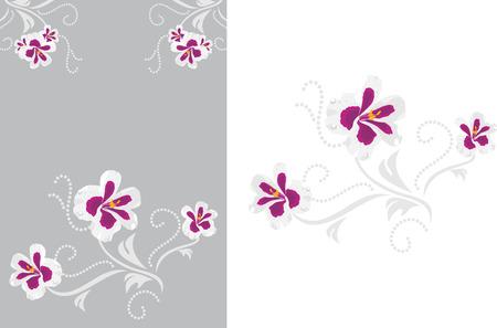 decorative elements: Decorative elements with stylized pelargonium flowers