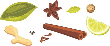 Spices for masala tea Vetores