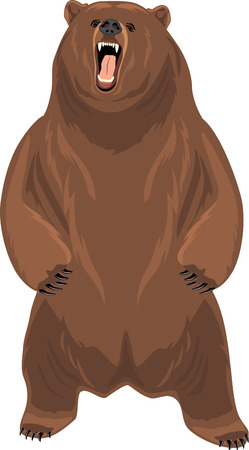 Grizzly bear Stock Vector - 65856975