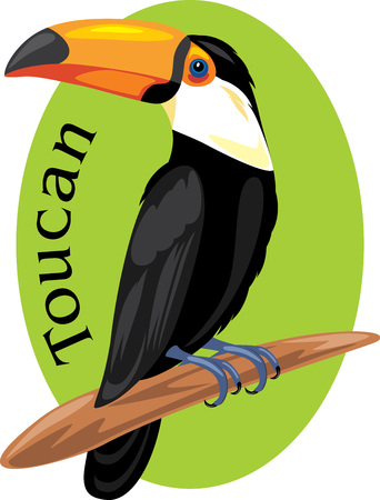 Proud toucan. Symbol for design