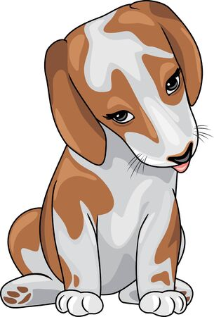 Shy cute puppy Stock Vector - 130705670