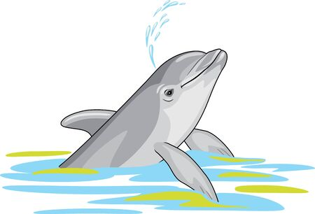 Happy dolphin splashes water Stock Vector - 130705672