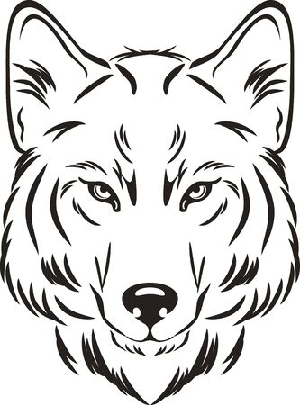 Wolf head. Outlined drawing