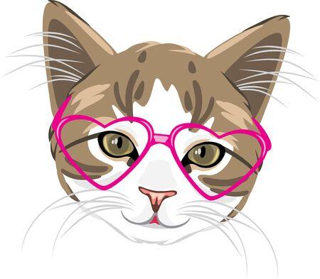 Cute kitten in pink glasses